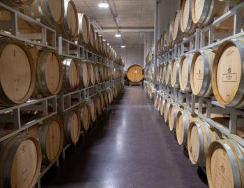 corridoio cantina vini bolzano